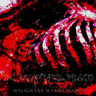 The Decapitated Midgets - Malignant Manifeasto EP