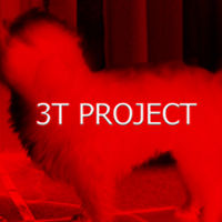 3T Project
