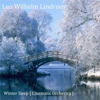 Leo Wilhelm Lindroos [ Winter Sleep ]